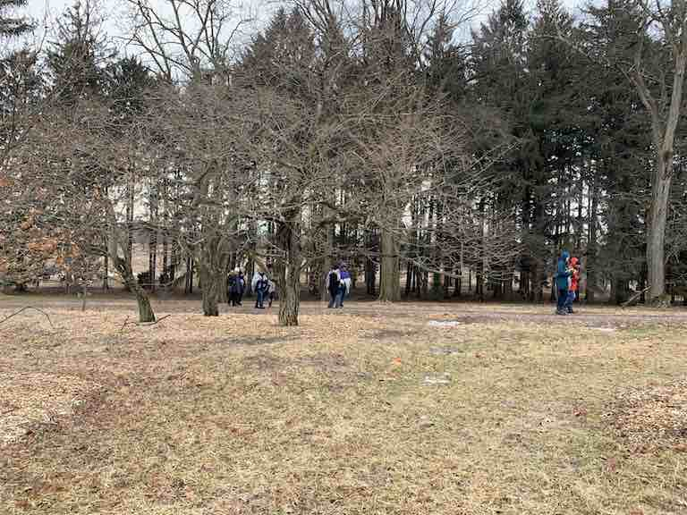 Forest bathing walk in wintertime participants on forest path